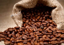 How Many Different Types of Coffee Beans are There?