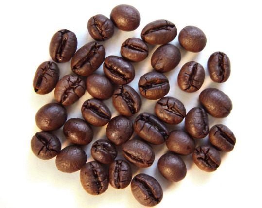 coffee excelsa beans